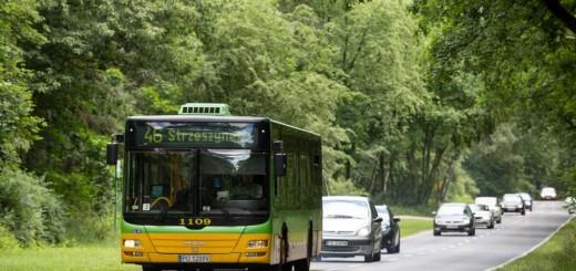 autobus-linii-46-do-Strzeszynka